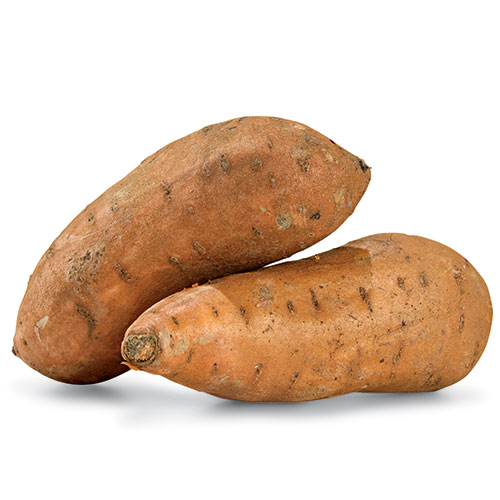 sweetpotato sq