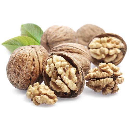walnut Sq