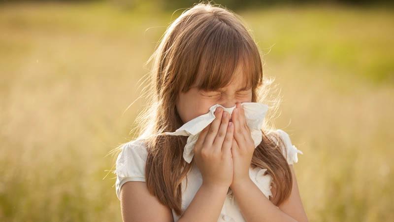 Αλλεργική καταρροή από γύρη