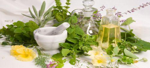 Τα βότανα που καταπολεμούν την αρθρίτιδα