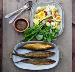 Διατροφή αλά Σκανδιναβία για την παχυσαρκία