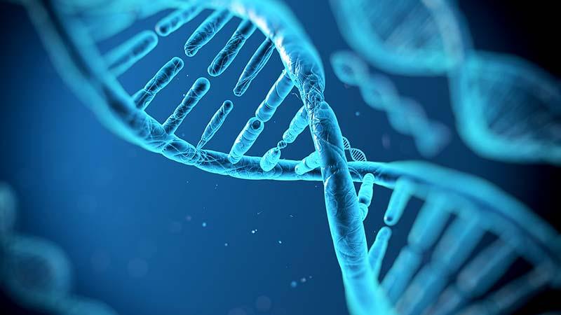 Το DNA αποτελεί παράγοντα σεξουαλικών εγκλημάτων