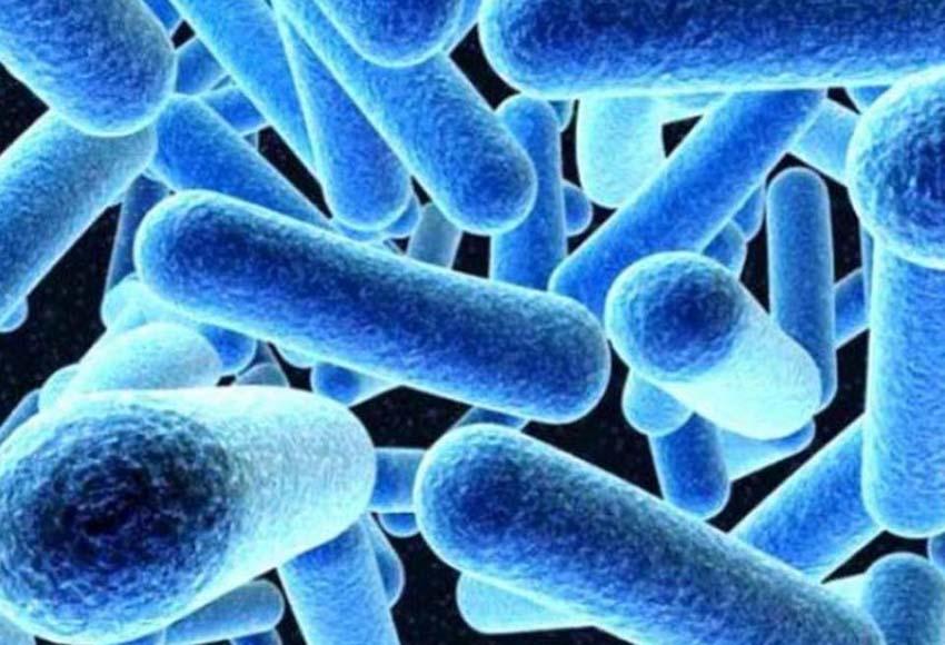 Yπάρχουν σημεία που τα μικρόβια κάνουν πάρτι και οι περισσότεροι τα ξέρουμε, τα χρήματα, οι λαβές στα μμμ κλπ