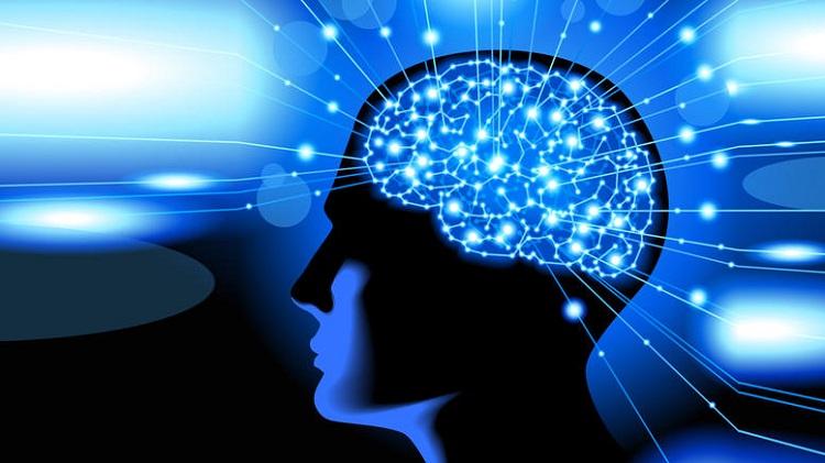 Η επίδραση του LSD: Ο ψυχεδελικός εγκέφαλος μοιάζει με του μωρού