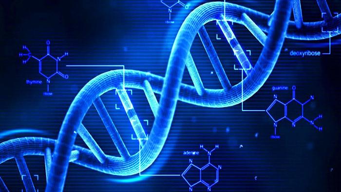 Εξέταση Clarigo NIPT για προγεννητικό έλεγχο του εμβρυϊκού DNA