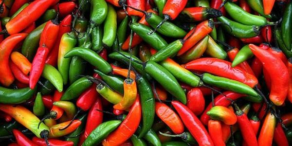 Οι καλύτερες τροφές για «κάψιμο» λίπους