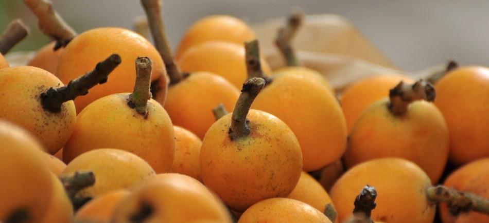 Το φρούτο που μας γεμίζει βιταμίνες